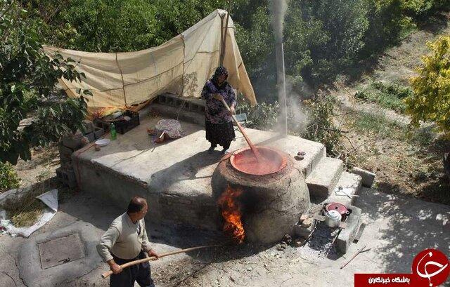 داغی بازار مشاغل خانگی در پاییز زنجان، چاشنی های که به سفره ها رنگ و لعاب می دهند
